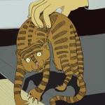 tygrys14